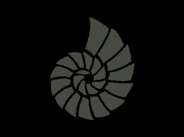 pearl coral logo